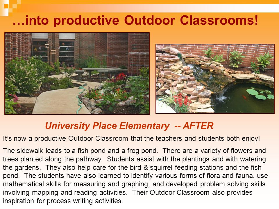 …into productive Outdoor Classrooms! University Place Elementary -- AFTER It's now a productive Outdoor Classroom that the teachers and students both