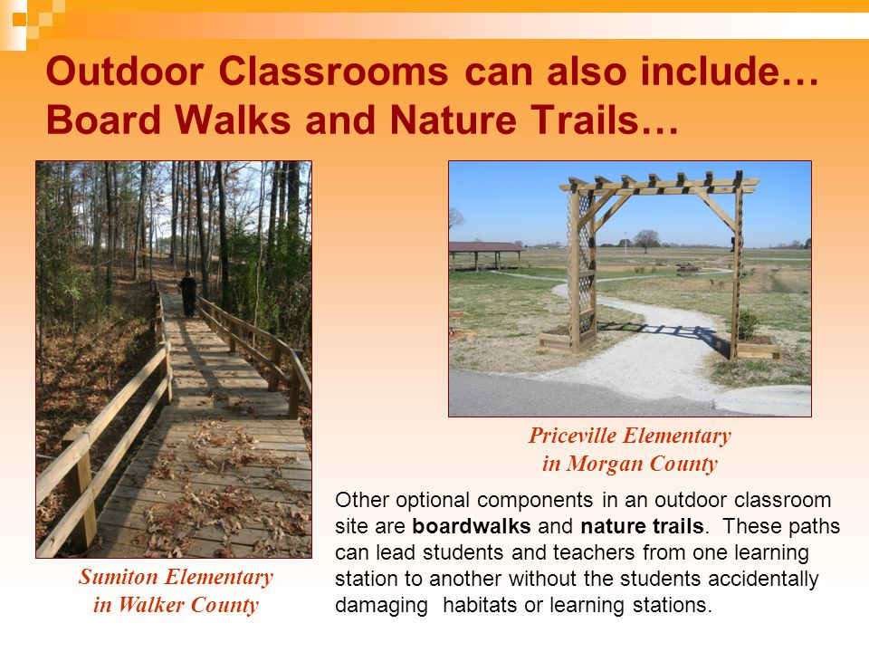 Outdoor Classrooms can include learning stations in forest communities… John E Bryan Elementary in Blount County Bluff Park Elementary in Jefferson County Some schools have natural forest communities within a 3-5 minutes walk of their indoor classrooms, where they can incorporate nature trails with learning stations such as: Plant Identification and Description Signs where students can practice their match skills by measuring the size of the plants to determine if they are fully grown; Log Decomposition Station where students can study decomposers such as bugs under a fallen log and moss or lichen on top of the log; and A History Stump where students can count the rings of a tree to determine the tree's age, and they can correlate the various rings to moments in history (such as when 9/11 occurred in 2001).
