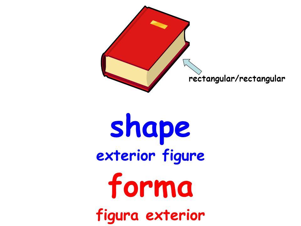 shape exterior figure forma figura exterior rectangular/rectangular