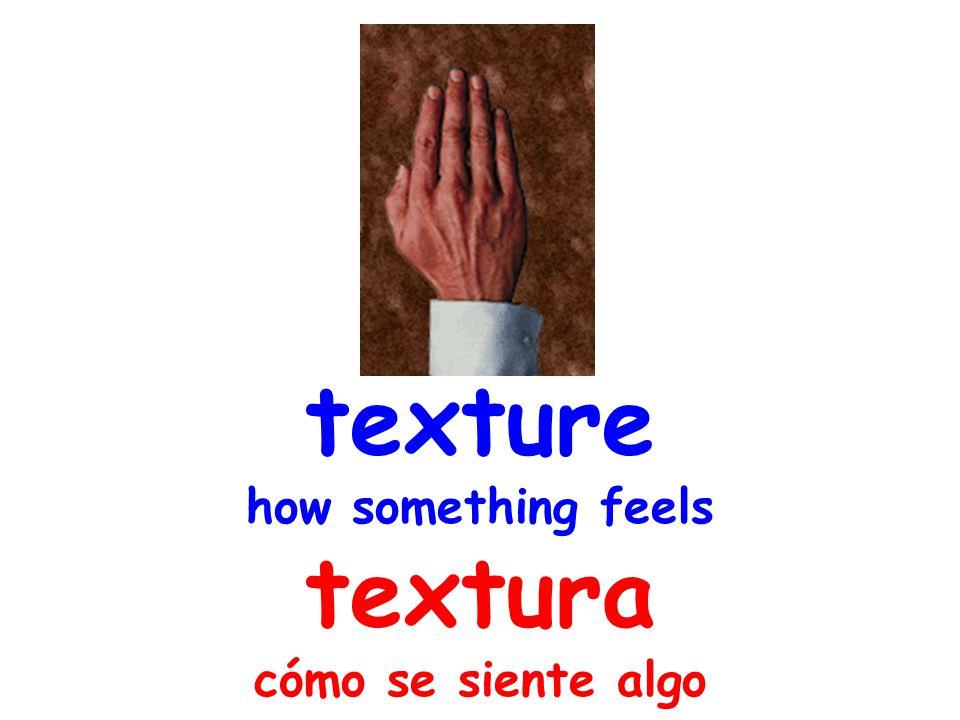 texture how something feels textura cómo se siente algo