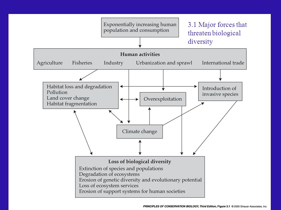 3.1 Major forces that threaten biological diversity