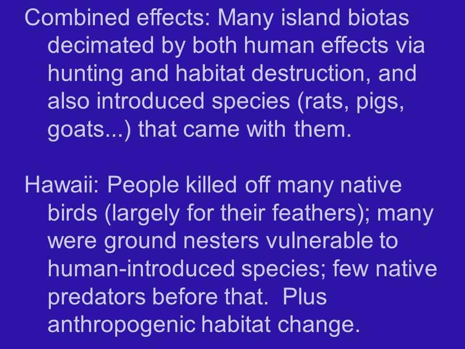 Combined effects: Many island biotas decimated by both human effects via hunting and habitat destruction, and also introduced species (rats, pigs, goats...) that came with them.