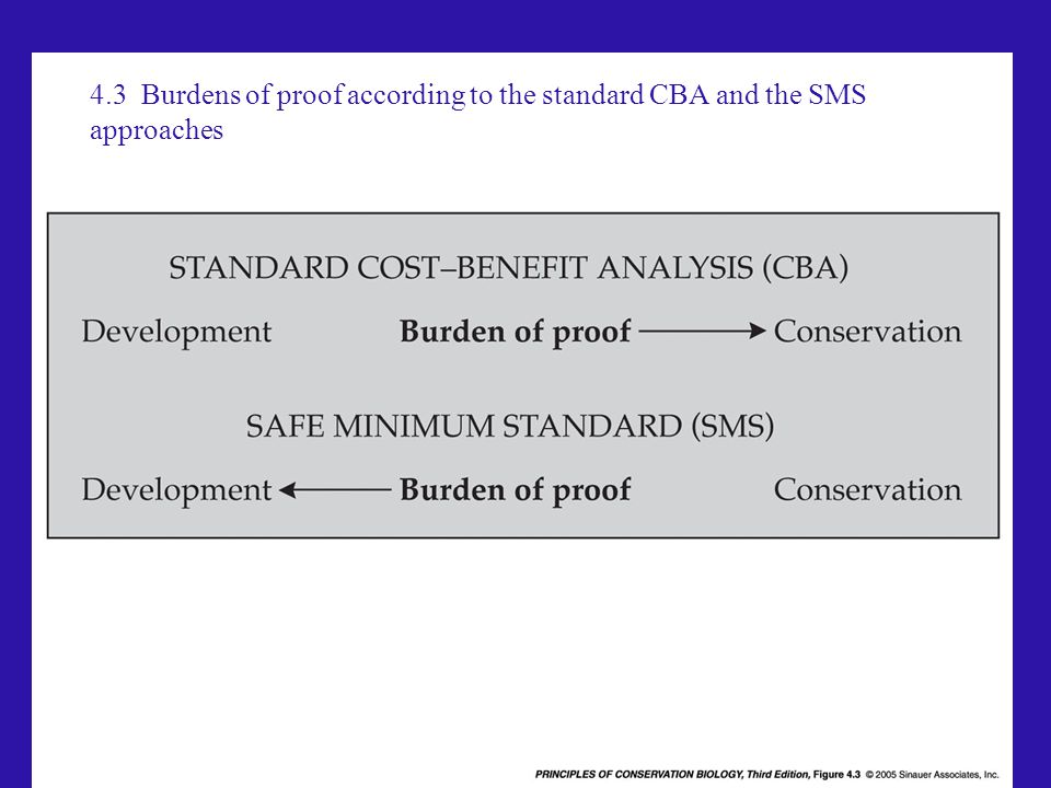 4.3 Burdens of proof according to the standard CBA and the SMS approaches