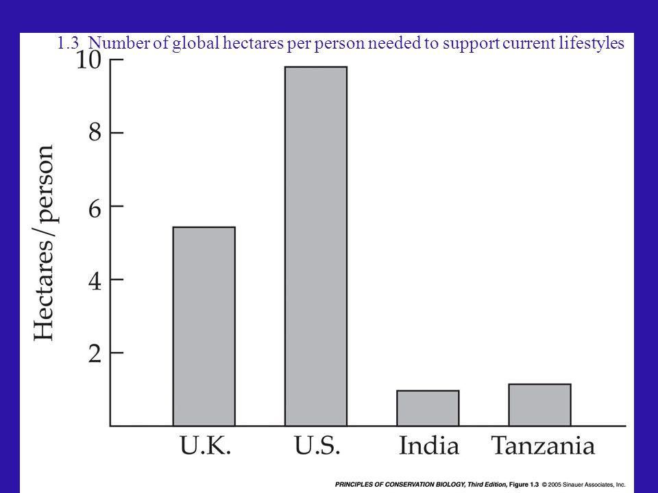 1.3 Number of global hectares per person needed to support current lifestyles