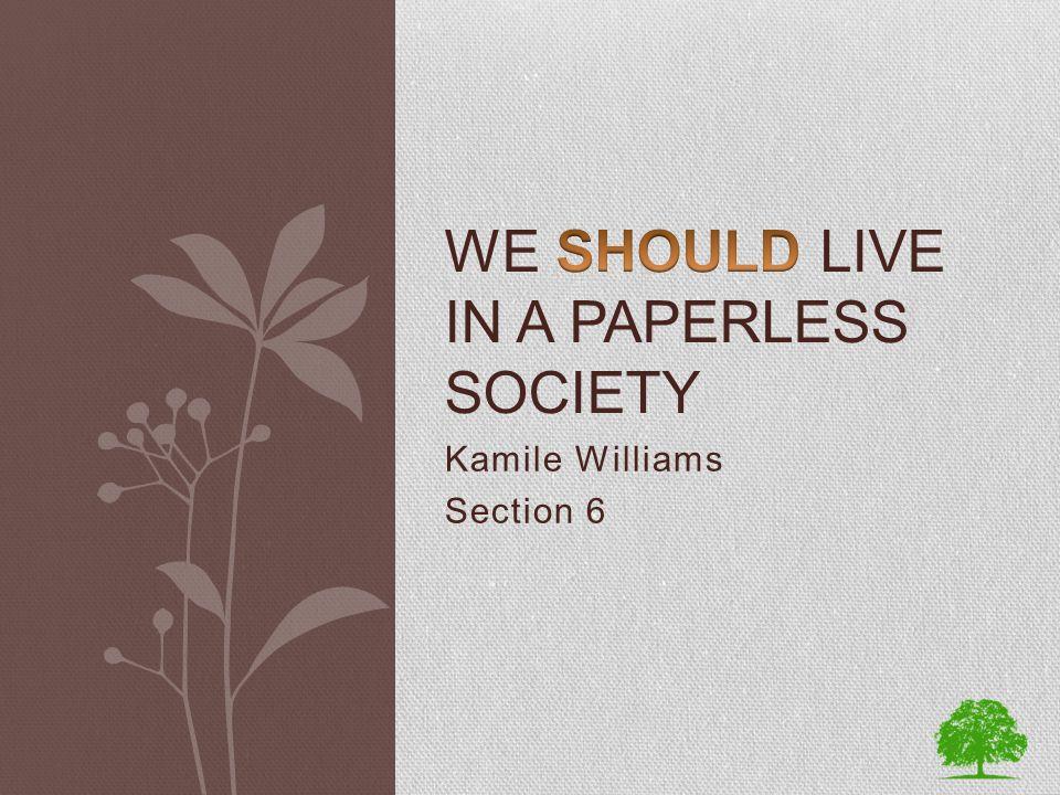 Kamile Williams Section 6