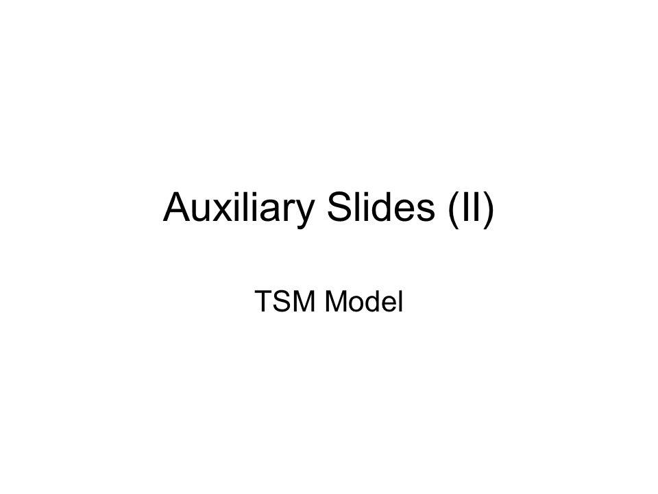 Auxiliary Slides (II) TSM Model