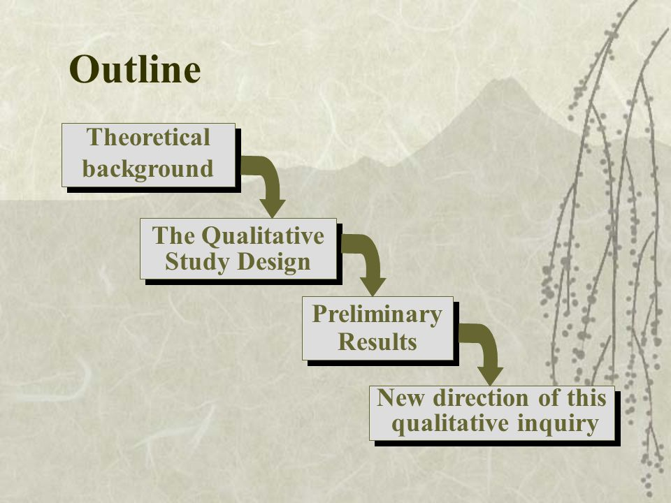 Outline Theoretical background Theoretical background The Qualitative Study Design The Qualitative Study Design Preliminary Results New direction of this qualitative inquiry New direction of this qualitative inquiry