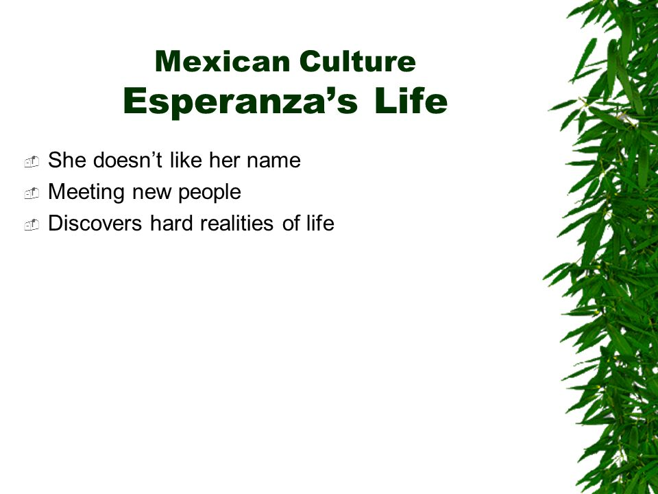 Mexican Culture Esperanza's Life  She doesn't like her name  Meeting new people  Discovers hard realities of life