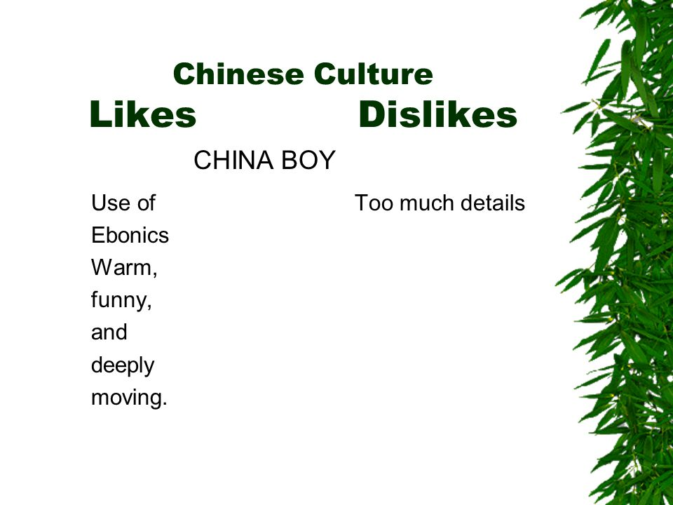 Chinese Culture LikesDislikes Use of Ebonics Warm, funny, and deeply moving.