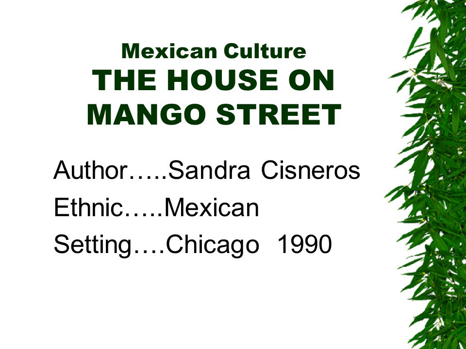 Mexican Culture THE HOUSE ON MANGO STREET Author…..Sandra Cisneros Ethnic…..Mexican Setting….Chicago 1990
