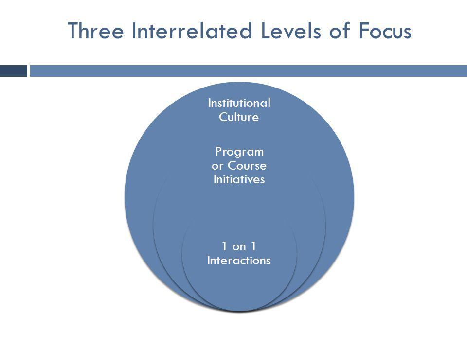 Three Interrelated Levels of Focus Institutional Culture Program or Course Initiatives 1 on 1 Interactions
