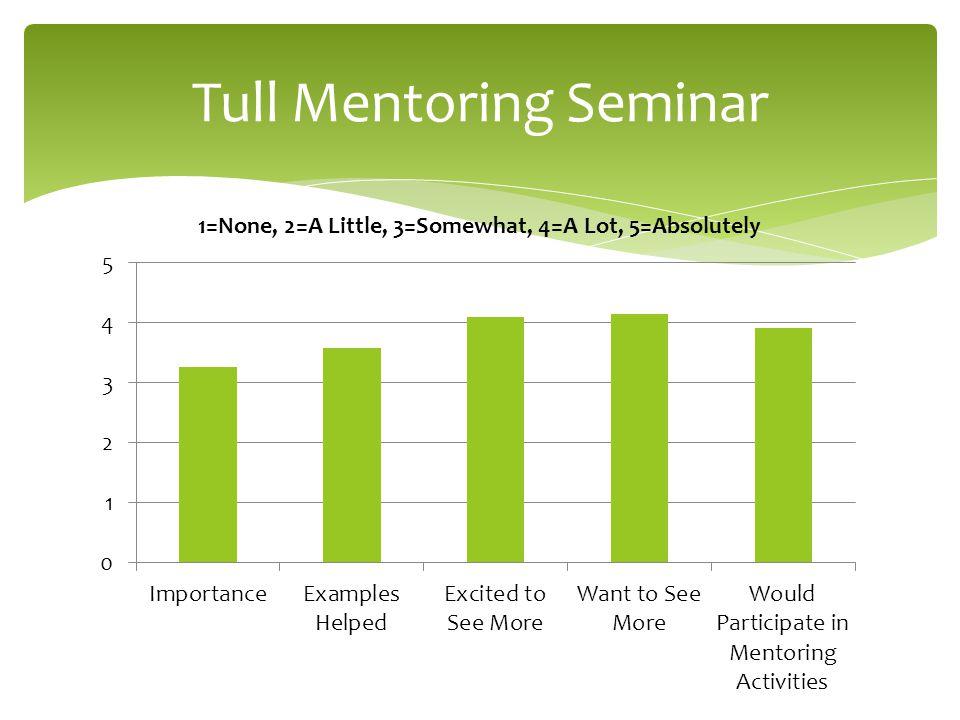Tull Mentoring Seminar