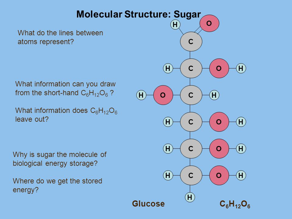 Molecular Structure: Sugar H H CO HH C O CO HH CO HH CO HH CO HH Why is sugar the molecule of biological energy storage? Where do we get the stored en
