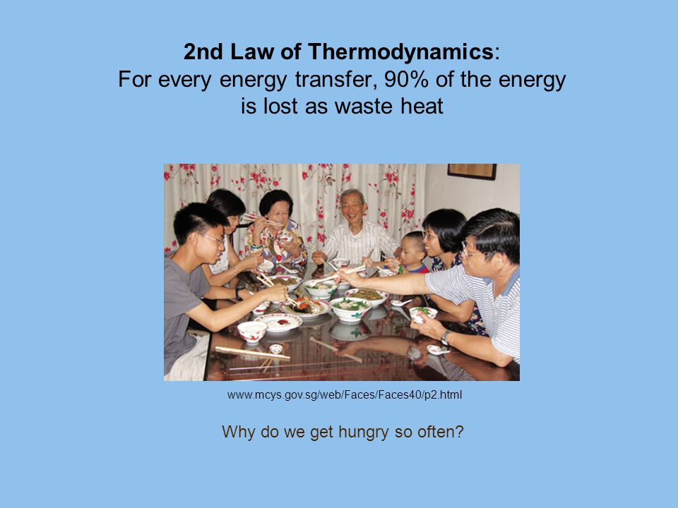2nd Law of Thermodynamics: For every energy transfer, 90% of the energy is lost as waste heat Why do we get hungry so often? www.mcys.gov.sg/web/Faces