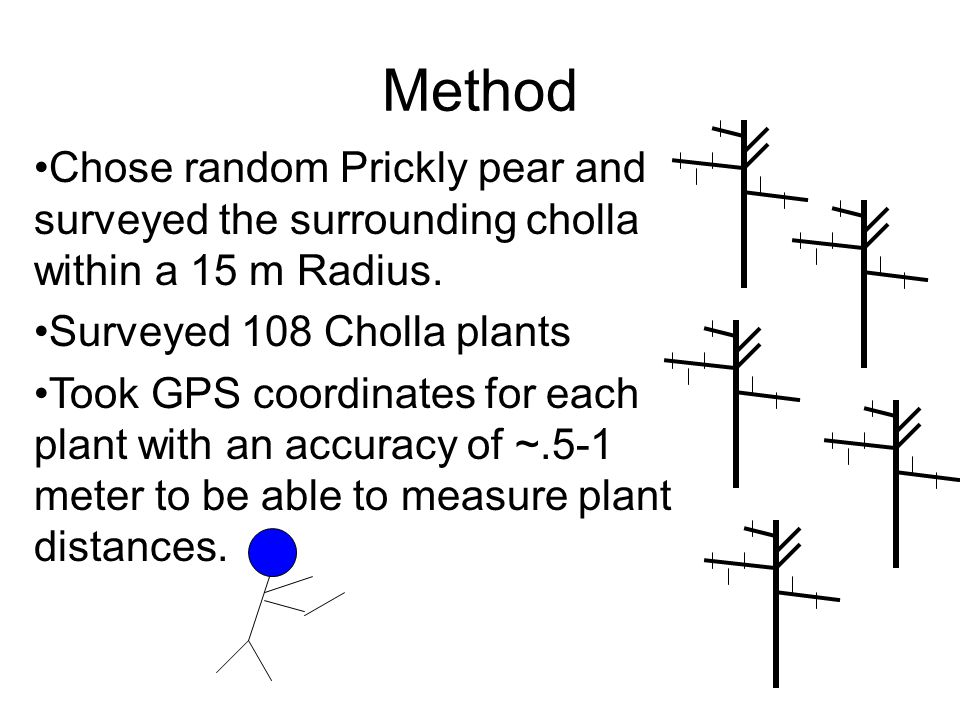 Method Chose random Prickly pear and surveyed the surrounding cholla within a 15 m Radius.