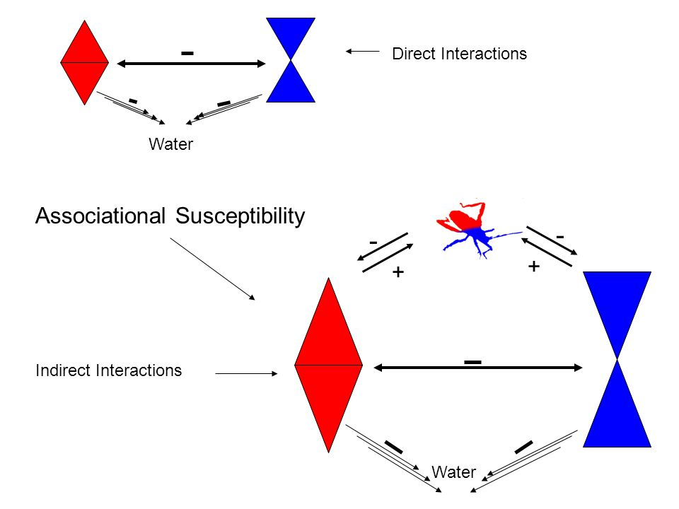 Water + - + - Associational Susceptibility Direct Interactions Indirect Interactions