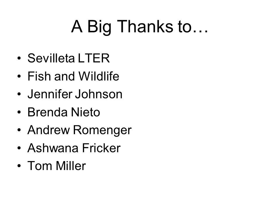 A Big Thanks to… Sevilleta LTER Fish and Wildlife Jennifer Johnson Brenda Nieto Andrew Romenger Ashwana Fricker Tom Miller