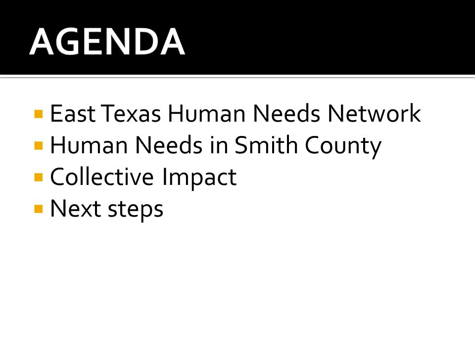  East Texas Human Needs Network  Human Needs in Smith County  Collective Impact  Next steps
