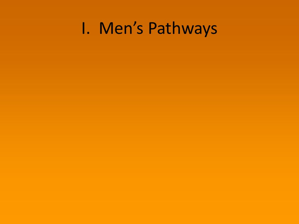 Men's Pathways: A Model SENSITIZING EXPERIENCE Disclosure / witness Social justice consciousness Learning opportunity Influenced by women Hearing stories OPPORTUNITY EXPERIENCE Personal invitation / nomination Personal/ community connections Looking for community Job/volunteer-position seeking MAKING MEANING Compelled to action Shift in world view Joining with others ANTI- VIOLENCE INVOLVEMENT