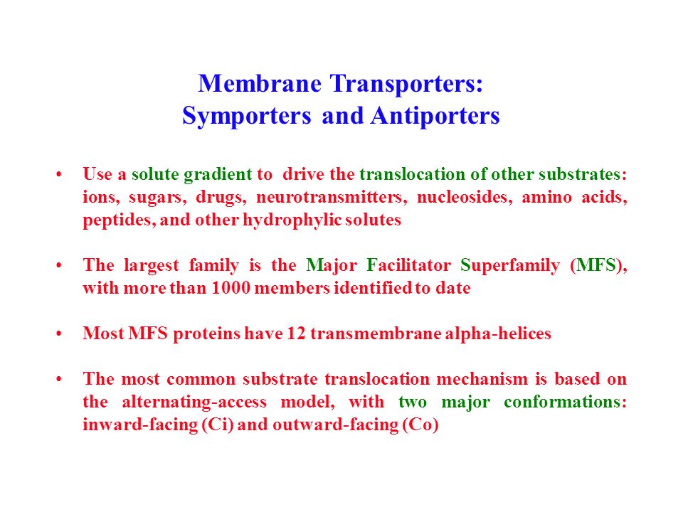 Membrane Transporters: Symporters and Antiporters Use a solute gradient to drive the translocation of other substrates: ions, sugars, drugs, neurotransmitters, nucleosides, amino acids, peptides, and other hydrophylic solutes The largest family is the Major Facilitator Superfamily (MFS), with more than 1000 members identified to date Most MFS proteins have 12 transmembrane alpha-helices The most common substrate translocation mechanism is based on the alternating-access model, with two major conformations: inward-facing (Ci) and outward-facing (Co)