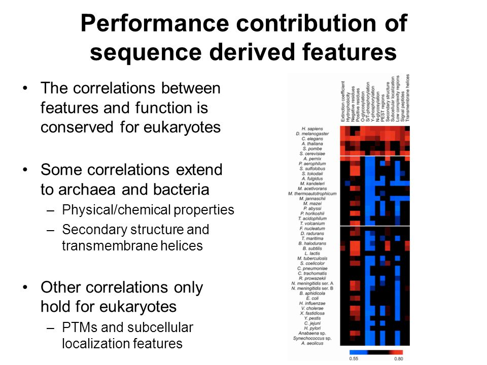 Performance contribution of sequence derived features The correlations between features and function is conserved for eukaryotes Some correlations ext