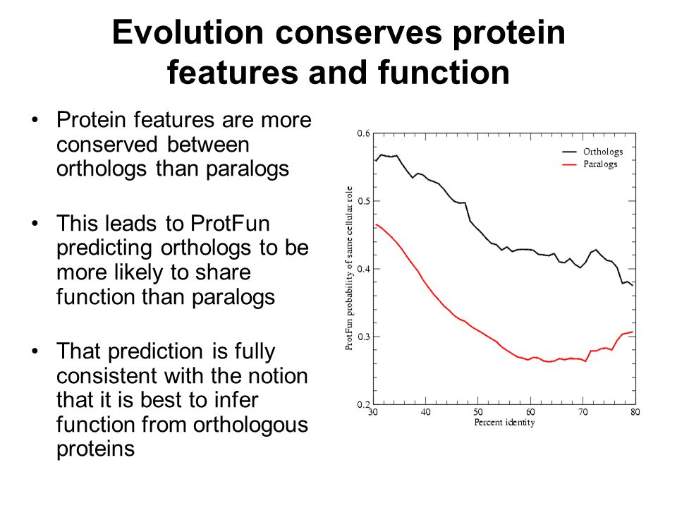 Evolution conserves protein features and function Protein features are more conserved between orthologs than paralogs This leads to ProtFun predicting