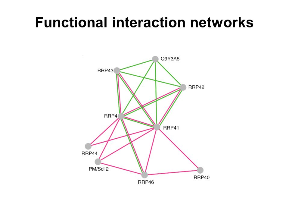 Functional interaction networks