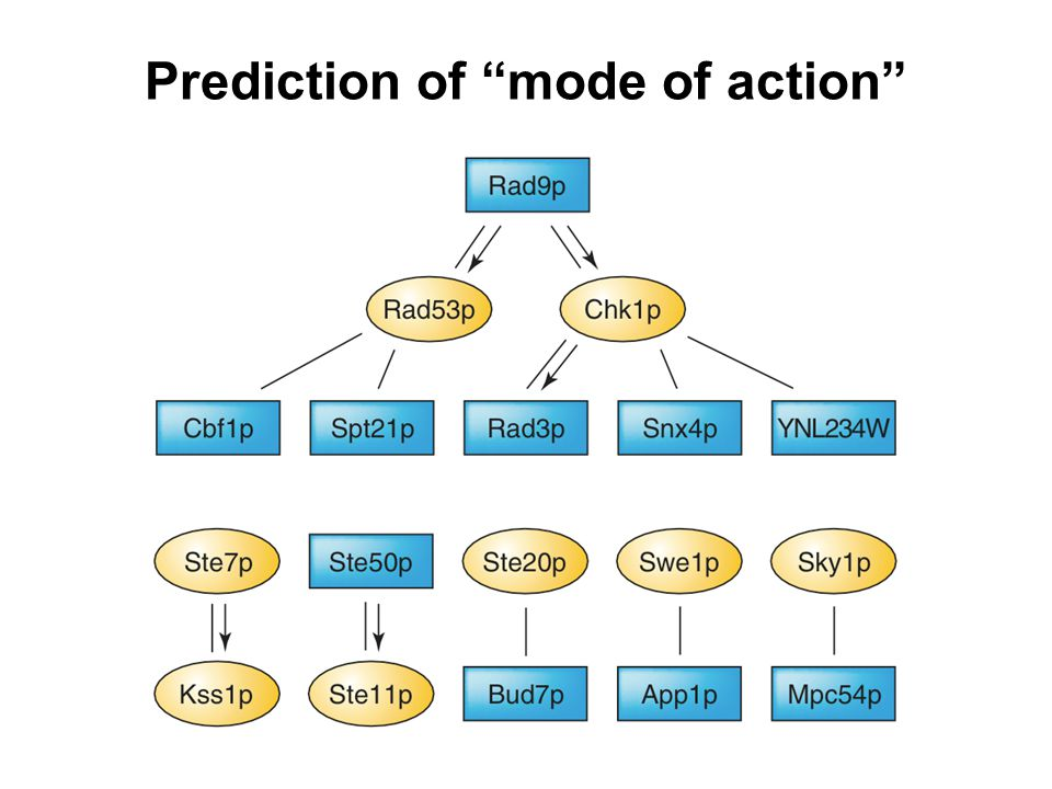 "Prediction of ""mode of action"""