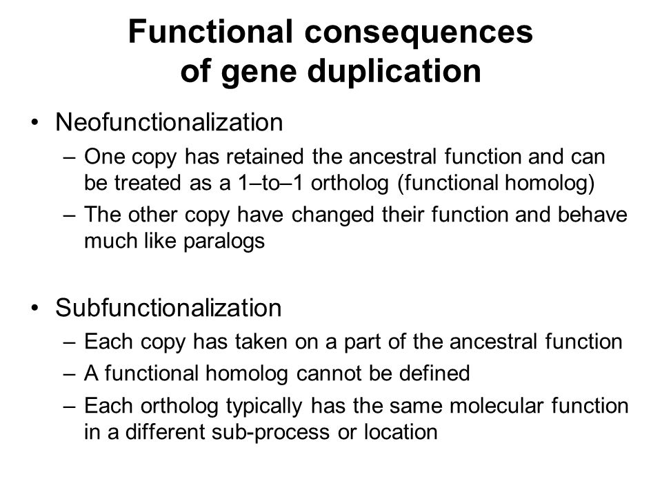 Functional consequences of gene duplication Neofunctionalization –One copy has retained the ancestral function and can be treated as a 1–to–1 ortholog