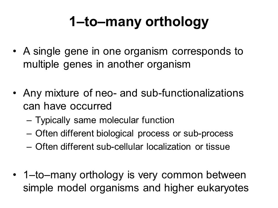 1–to–many orthology A single gene in one organism corresponds to multiple genes in another organism Any mixture of neo- and sub-functionalizations can