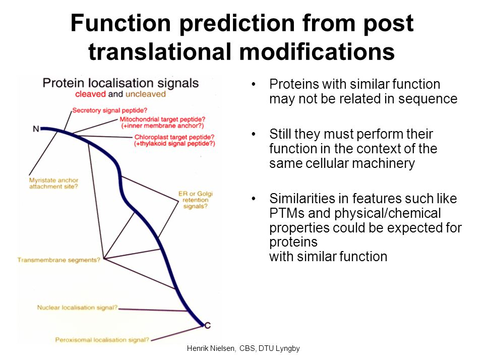 Function prediction from post translational modifications Proteins with similar function may not be related in sequence Still they must perform their