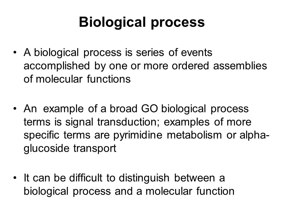 Detection of orthologs Reconstruction of phylogenetic trees –The theoretically most correct way –Works for analyzing particular genes of interest Methods based on reciprocal matches –What currently works at the genomic scale Manual curation –Detection of very remote orthologs may require that knowledge on gene synteny and/or protein function is taken into account