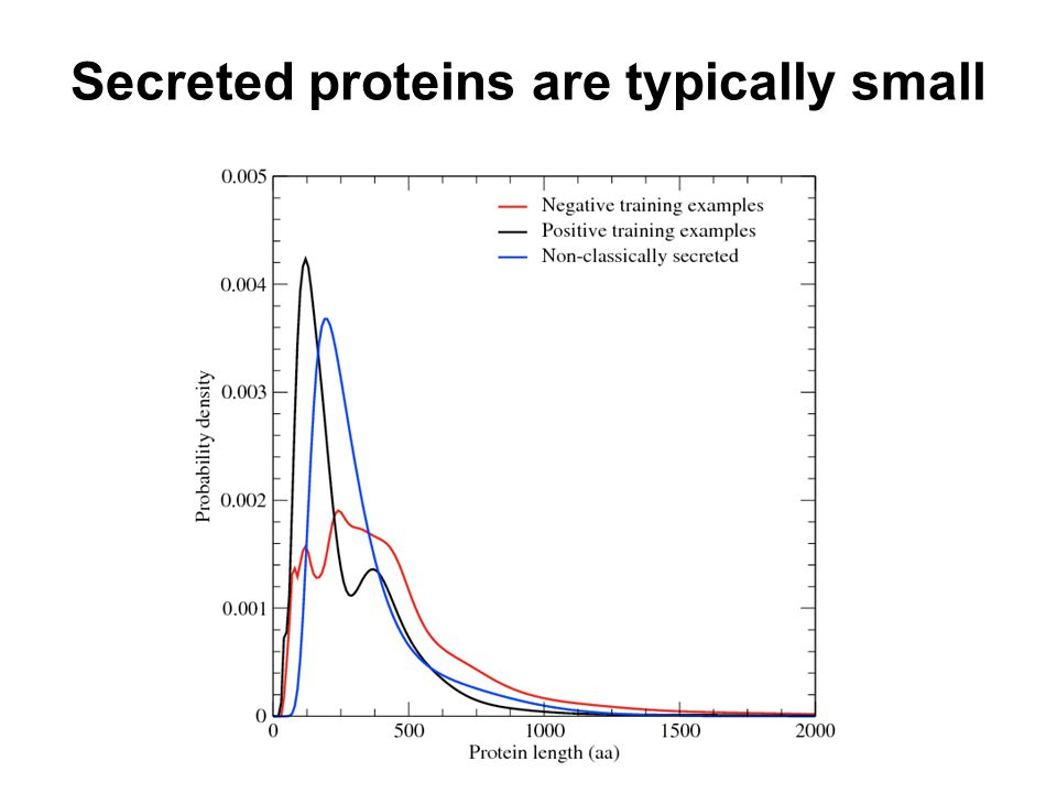 Secreted proteins are typically small