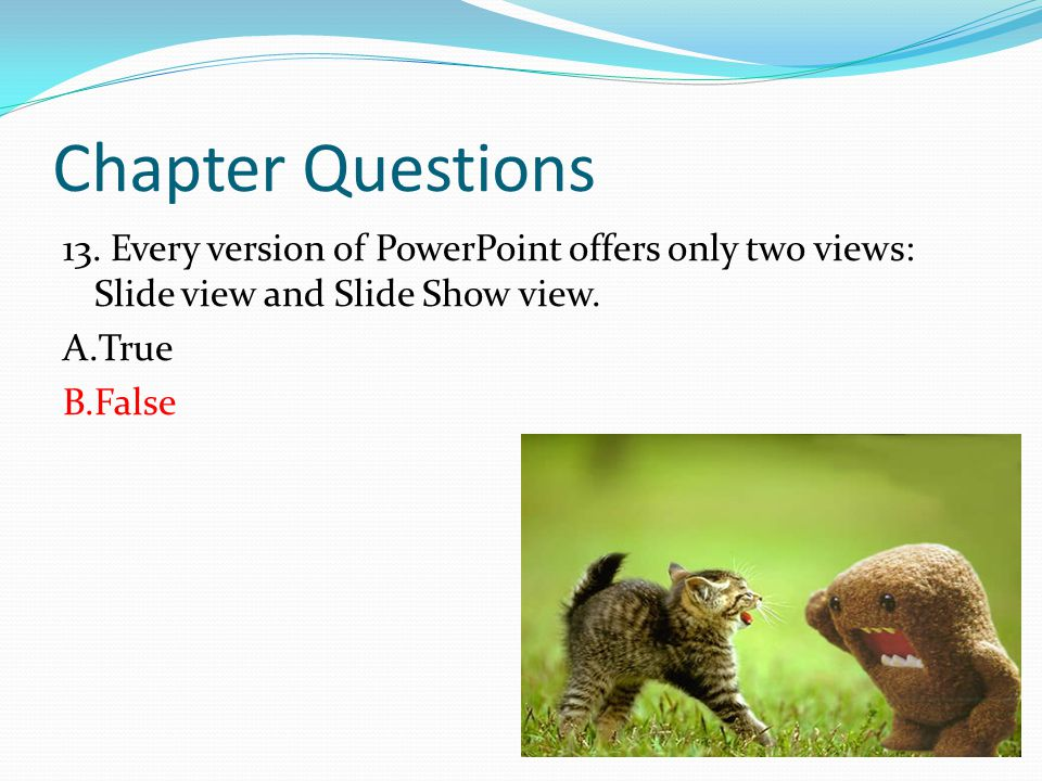 Chapter Questions 13.