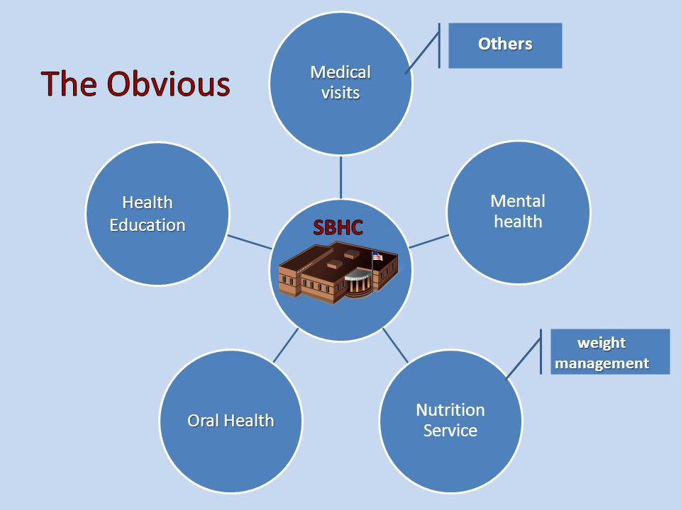Medical visits Mental health Nutrition Service Oral Health Health Education Others weight management