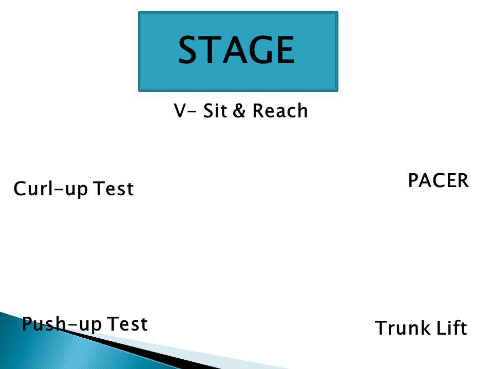 STAGE V- Sit & Reach Trunk Lift Push-up Test Curl-up Test PACER