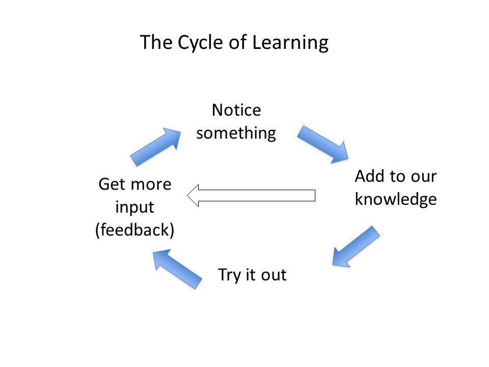 Notice something Get more input (feedback) Try it out Add to our knowledge The Cycle of Learning