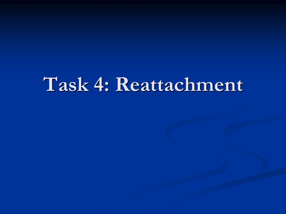 Task 4: Reattachment