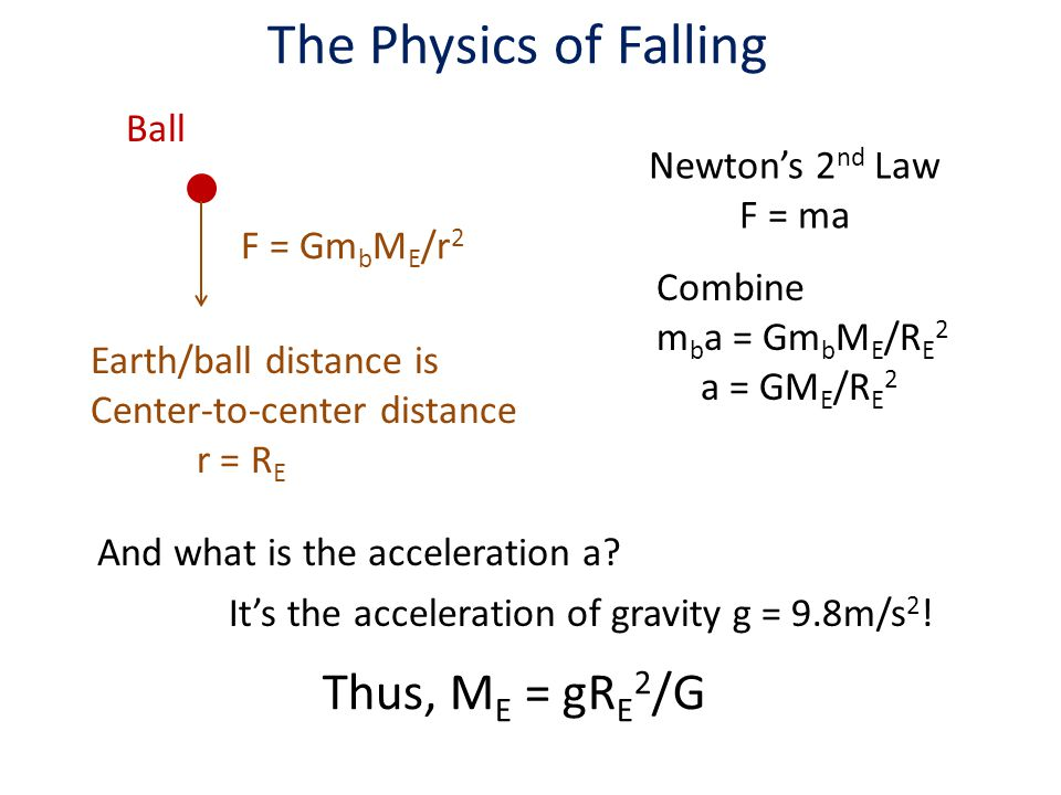 The Physics of Falling F = Gm b M E /r 2 Ball Earth/ball distance is Center-to-center distance r = R E Newton's 2 nd Law F = ma Combine m b a = Gm b M E /R E 2 a = GM E /R E 2 And what is the acceleration a.