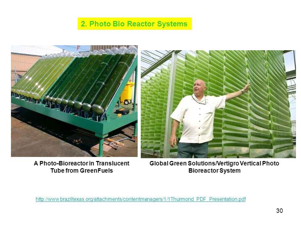30 2. Photo Bio Reactor Systems http://www.braziltexas.org/attachments/contentmanagers/1/1Thurmond_PDF_Presentation.pdf A Photo-Bioreactor in Transluc