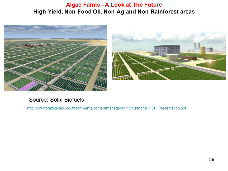 39 Algae Farms - A Look at The Future High-Yield, Non-Food Oil, Non-Ag and Non-Rainforest areas Source: Solix Biofuels http://www.braziltexas.org/atta