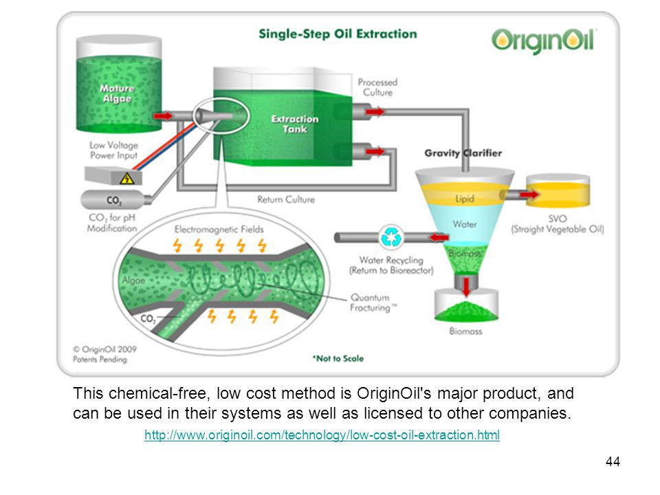 This chemical-free, low cost method is OriginOil's major product, and can be used in their systems as well as licensed to other companies. 44 http://w