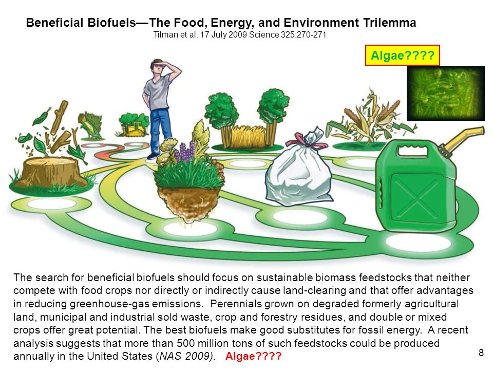 Beneficial Biofuels—The Food, Energy, and Environment Trilemma Tilman et al. 17 July 2009 Science 325:270-271 The search for beneficial biofuels shoul
