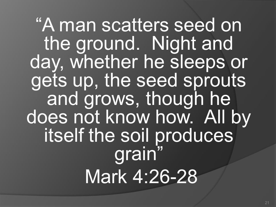 21 A man scatters seed on the ground.