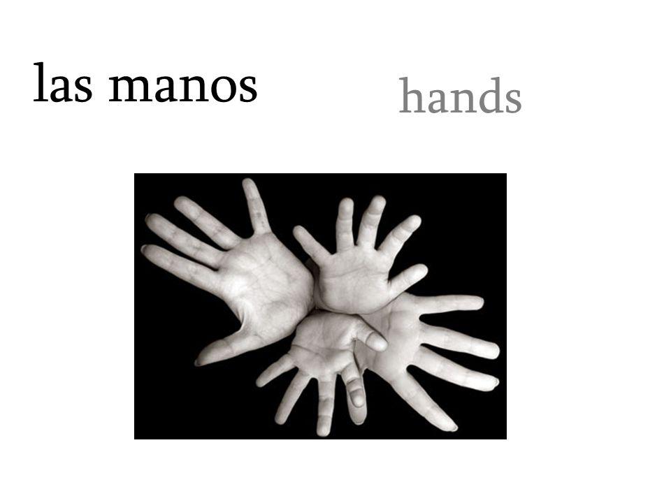 las manos hands
