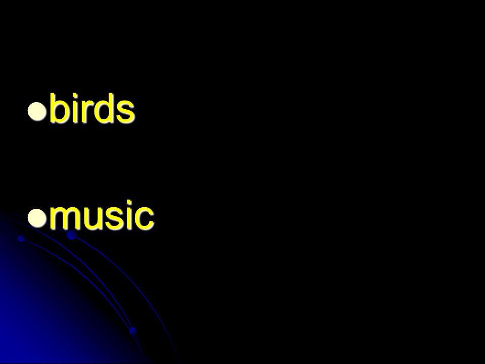birds birds music music