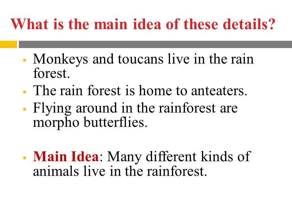 What is the main idea of these details. Monkeys and toucans live in the rain forest.