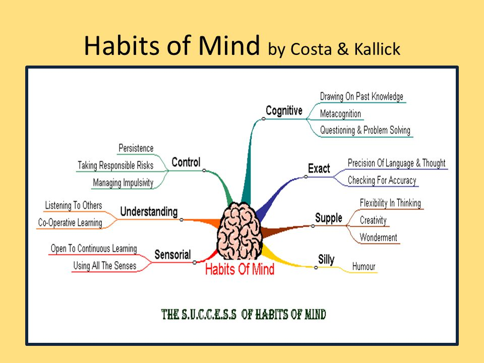 Habits of Mind by Costa & Kallick