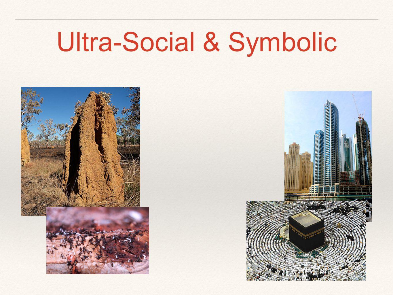 Ultra-Social & Symbolic