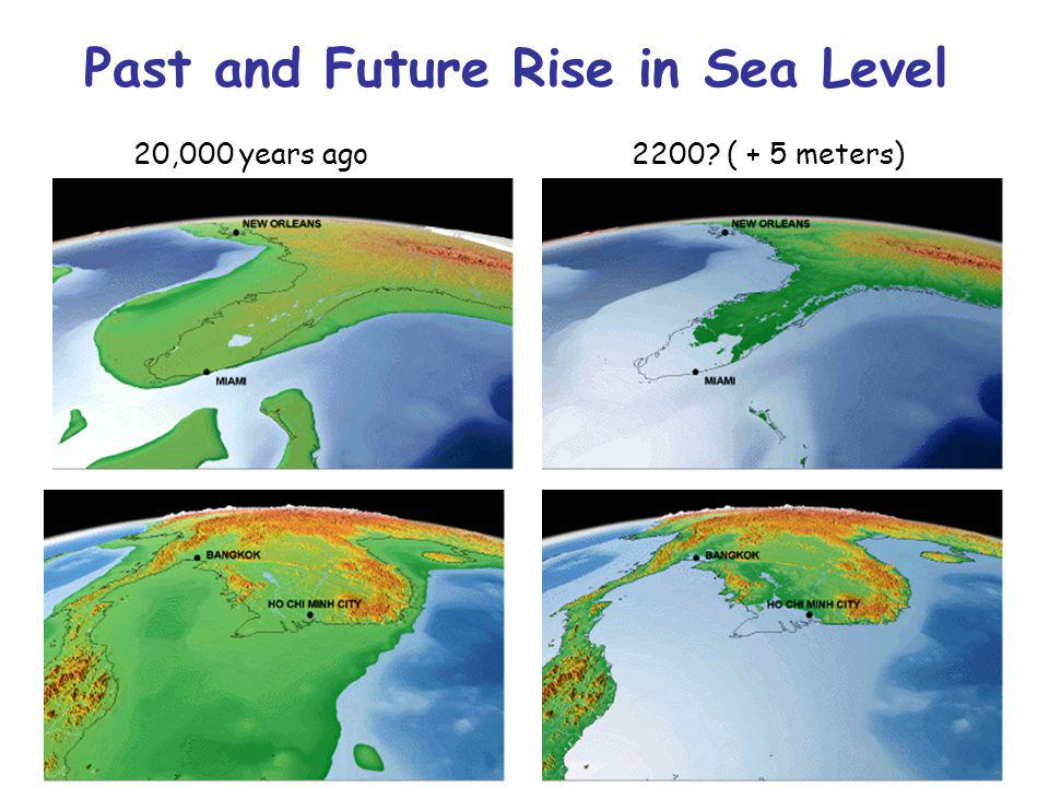 20,000 years ago2200? ( + 5 meters) Past and Future Rise in Sea Level